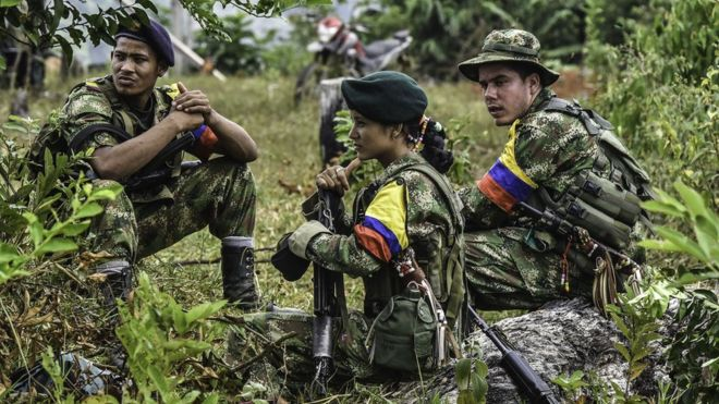 FARC soldiers on duty. http://ichef.bbci.co.uk/news/660/cpsprodpb/11D3D/production/_88912037_hi032000339.jpg
