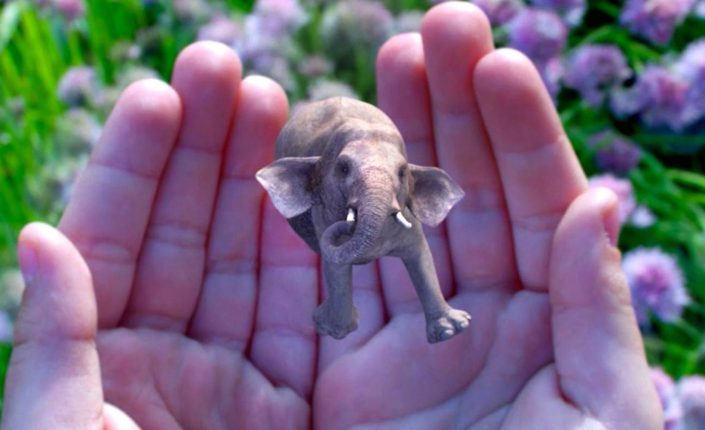 Magic Leap: The Future of AR?