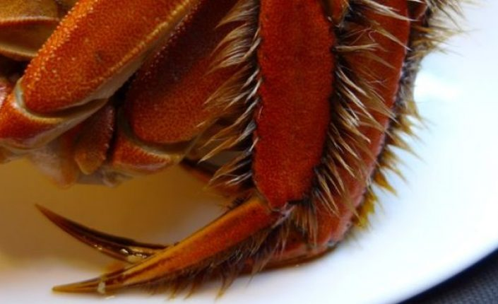 Hungry for Some Hairy Crabs? Beware Dioxins!